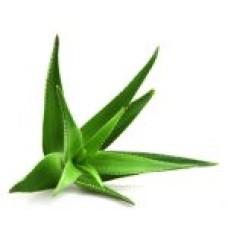 Fruct Pireu 100% Natural - Aloe Vera