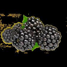 Fruct Piureu 100% Natural - Mure